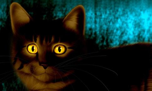 Коты четырех стихий. Глава 1 (предыдущее можно было не читать)